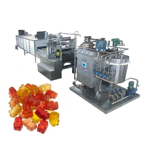 Various Jelly Candy Manufacturing Mogul Plant Machine